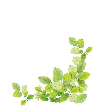 leaves-3-min